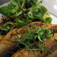 Frisch gebratene Heringe aus dem Naturpark Schlei mit Gurkensalat und Bratkartoffeln