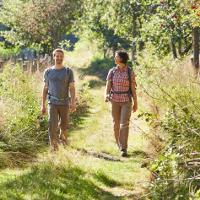 Der Weg ist das Ziel: Pilgern und Wandern im Naturpark Hümmling