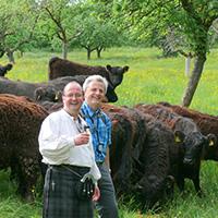 Whisky-Trail durch die Highlands des Schwäbischen Waldes