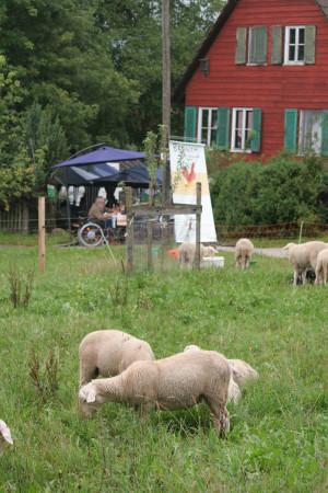110807 Brunch adB Wacholderhof 010 300x450 Naturpark   eine der ersten nachhaltigen Destinationen des Landes