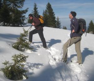 120129 Hieber 300x261 Unterwegs mit den Naturparkführern im Dezember
