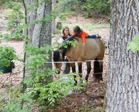 130519 Ebnisee Drixler 079 klein Unterwegs mit den Naturparkführern im Juni 2014
