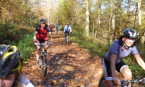 140223 Pfeffer beitrag Mit dem Mountainbike durch den Winterwald