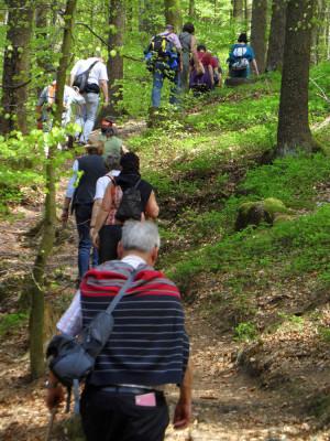 140406 Kuch 300x400 Unterwegs mit den Naturparkführer im April