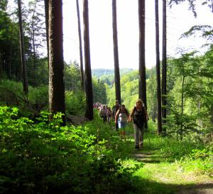 Unterwegs mit die Naturparkführer