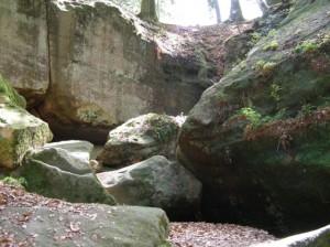 141019 Bohn 300x224 Naturpark aktiv   unterwegs mit Naturparkführerin Ruth Bohn