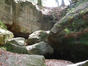 Geführte Wanderung mit Naturparkführerin Ruth Bohn