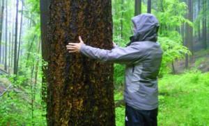 Geführte Wanderung mit Naturparkführerin Petra Kuch
