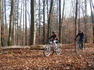 Mit dem Mountainbike durch den Winterwald