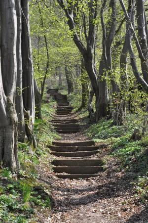150412 schroeder 300x451 Naturpark aktiv   Alte Geschichten und neue Weine