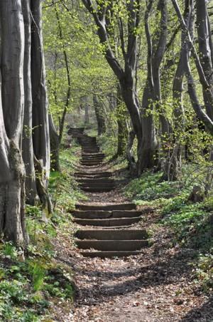 Naturpark aktiv - Alte Geschichten und neue Weine