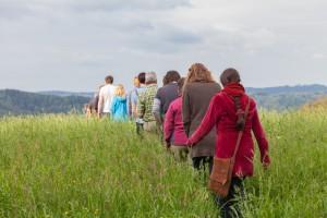 Zehn Dinge, die Sie über den Wald wissen sollten