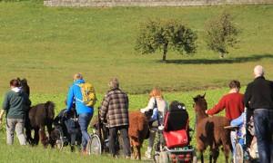 Rollstuhlfahrer/innen zum Testen von Wanderstrecken gesucht!