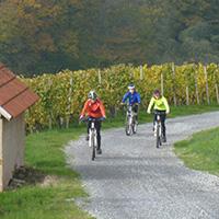 Mit dem Mountainbike auf römischen Wegen
