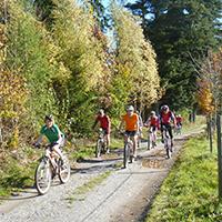 Farben des Herbstes - Mit dem Bike genießen