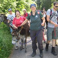 Esel-Trekkingtour um Mainhardt
