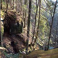 170618 nl NPaktiv Sternwanderung Bohn Naturpark aktiv: Sternwanderung   Räuberwanderung mit Schatzsuche