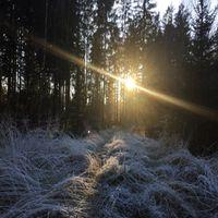 Start in´s neue Jahr - Raunachtwanderung