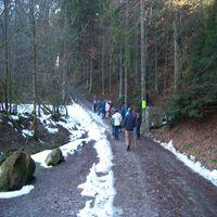mit Naturparkführerin Michaela Köhler durch den verzauberten Wald
