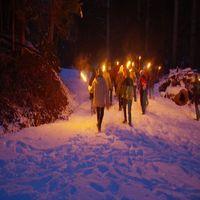 Feuer, Eis und Winterwald