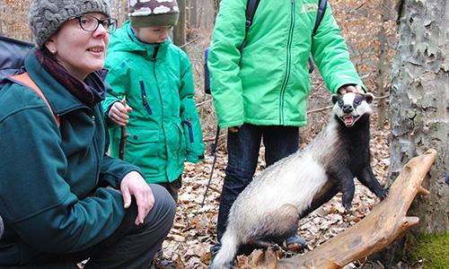 18.02.25 NP aktiv Ruecker2 Naturpark aktiv: Den Wildtieren auf der Spur