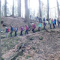 40 km-Wanderung: Soweit die Füße tragen