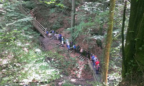 18.07.08 NP aktiv Reiss.jpg Naturpark aktiv: Silberstollen, Himmelsleiter, Waldgiganten