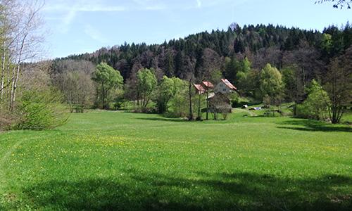 18.09.23 NP aktiv Mattheis Naturpark aktiv: Walkersbacher Wald  und Wiesenrunde