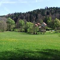 Walkersbacher Wald- und Wiesenrunde
