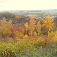 Herbstliche 25 km-Tour durch Wald und Weinberge