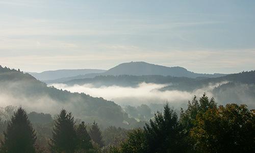 18.11.25 NP aktiv Hieber Naturpark aktiv: Mysteriöser Schwäbischer Wald