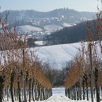 Geistreiche Geschichten im Wintergewand
