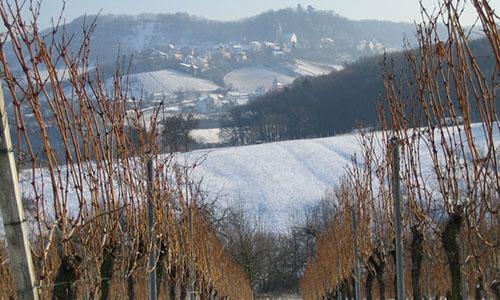 190106 NPaktiv Ruecker1 Naturpark…erzählt! Geistreiche Geschichten im Wintergewand