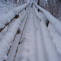 Naturpark…bewegt! Im Wandel der Jahreszeiten: Winter