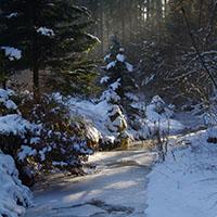 Naturpark…schmeckt! Feuer, Eis und Winterwald