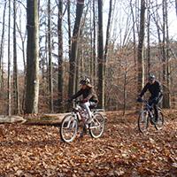 Naturpark…bewegt! Mit dem Mountainbike in die Löwensteiner Berge