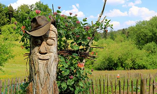 190419 NPaktiv Kuch1 Naturpark…bewegt! Waldbaden im Kraftort Natur