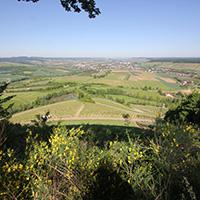40 km auf und ab rund um Löwenstein