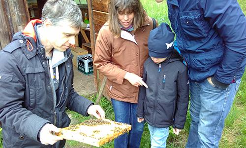 190505 Naturschutztag 27 Blick zurück nach vorn: Naturschutztag 2019