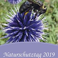 Wanderungen - Führungen - Mitmachaktionen beim Naturschutztag 2019