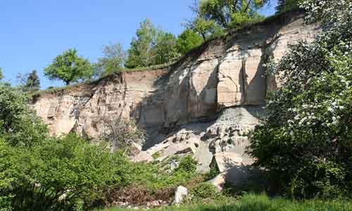 190609 NPaktiv Rombach Naturpark…blüht! Der Urbacher Bergrutsch   Wandel einer Landschaft