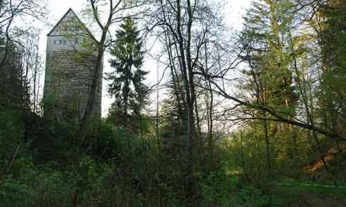 190616 NPaktiv Angstenberger.Helene Naturpark…erzählt! Schöne Wege, alte Kirchen und eine Turmhügelburg