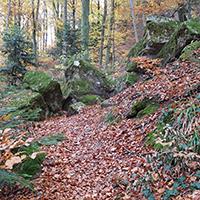 Rauschende Wasserfälle und urwaldartige Schluchten