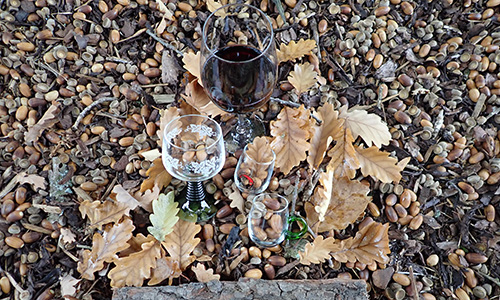 190901 NPaktiv Reiss Naturpark…schmeckt! Eiche trifft Wein