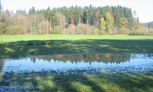 191020 NPaktiv Mattheis Naturpark…bewegt! Walkersbacher Herbstrunde