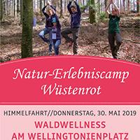 Waldwellness am Wellingtonienplatz: Entspannen – Genießen - Erleben
