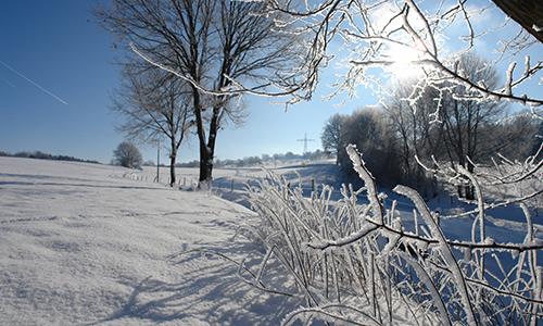 200108 BILD Winter mit den Naturparkfuehrern Angstenberger Ob es diesen Winter wohl noch ein weißes Märchenland geben wird?