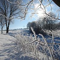Ob es diesen Winter wohl noch ein weißes Märchenland geben wird?