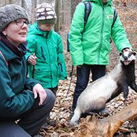 Naturpark aktiv - Den Wildtieren auf der Spur