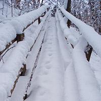 Im Wandel der Jahreszeiten - Winter